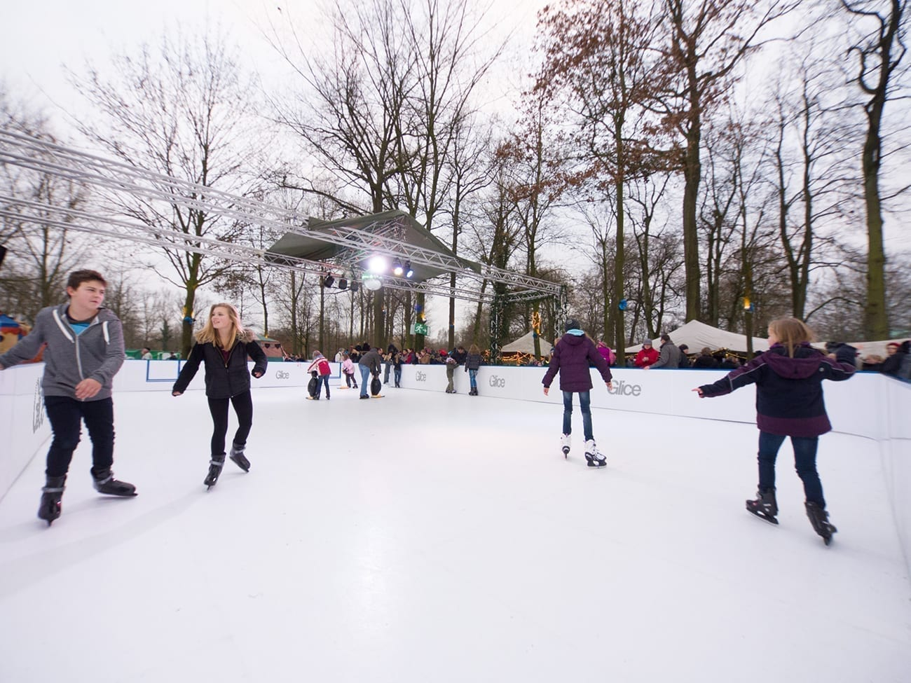 Image result for artificial ice
